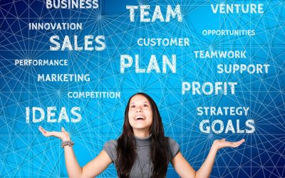 Customizing Your Job Fit and Entrepreneurial Path