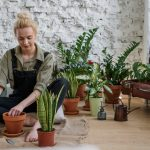 Be a Plant Mom: Easy Indoor Plants to Take Care of for Spring