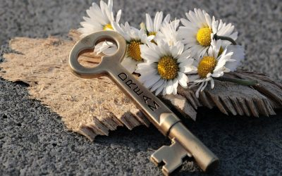 Take Back Your Power to Dream and Excavate the Obstacles to Opportunity