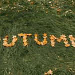 As Autumn Arrives, What Inspires You to Make Changes for Fall?